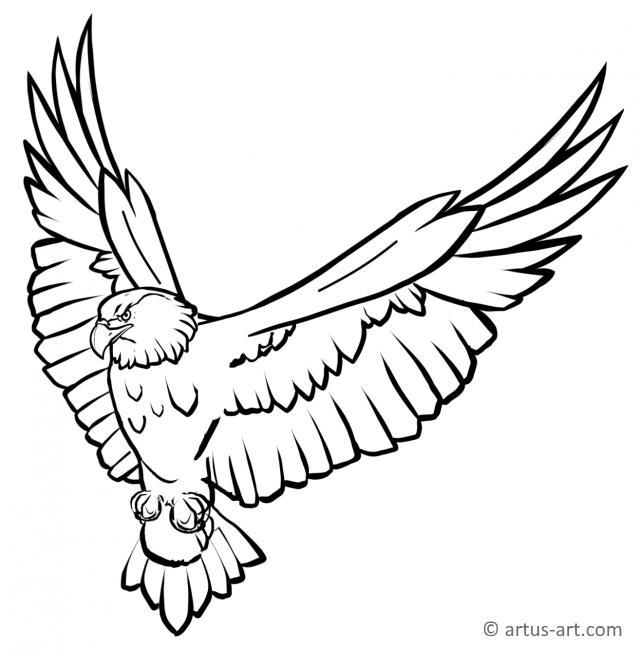 Adler Ausmalbild Gratis Ausdrucken Ausmalen Artus Art