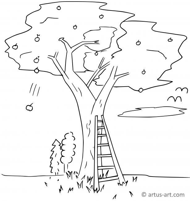 Apfelbaum Ausmalbild Gratis Ausdrucken Ausmalen Artus Art