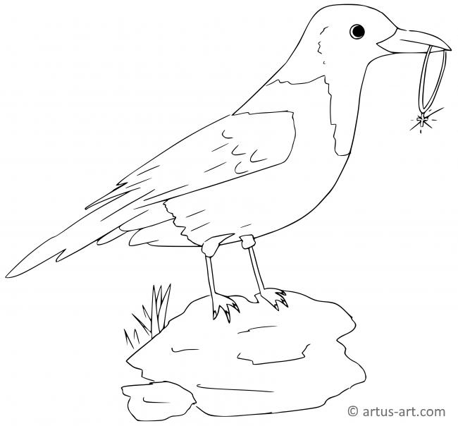 Magpie Coloring Page » Printable Coloring Page » Artus Art