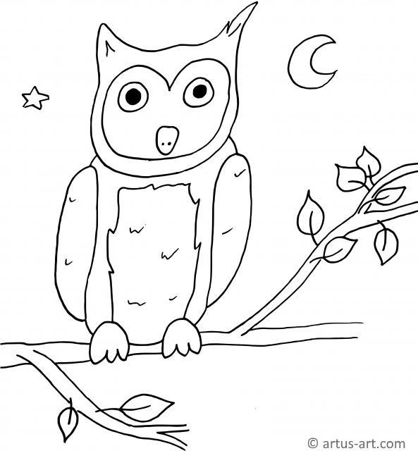 malvorlagen eule zum ausdrucken - kinder zeichnen und ausmalen