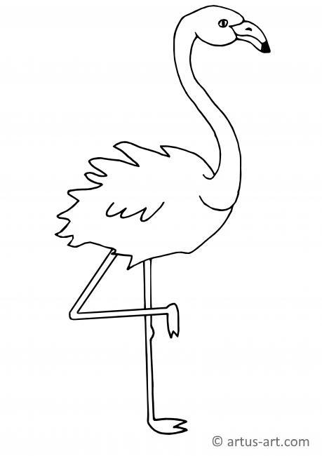 flamingo mit gehobenem fuß » gratis ausdrucken  ausmalen