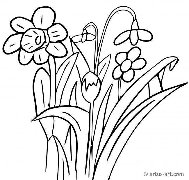 frühlingsblumen ausmalbild » gratis ausdrucken  ausmalen