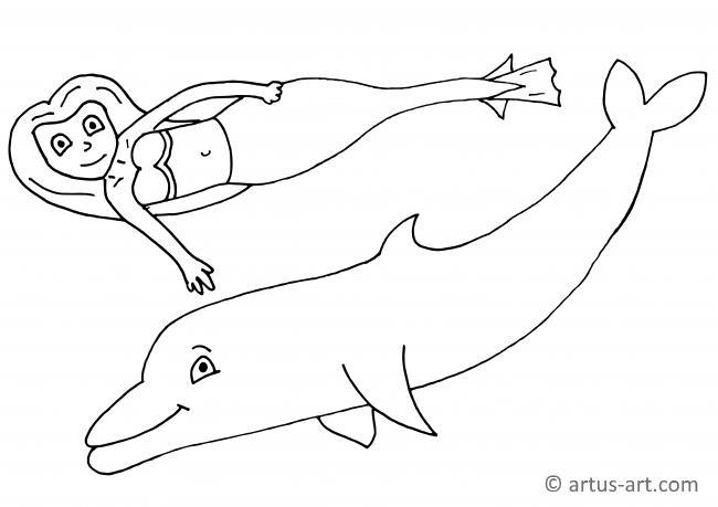37 delphin bilder zum ausdrucken  besten bilder von