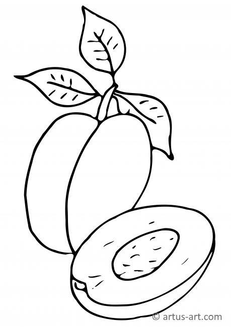 Plum Coloring Page