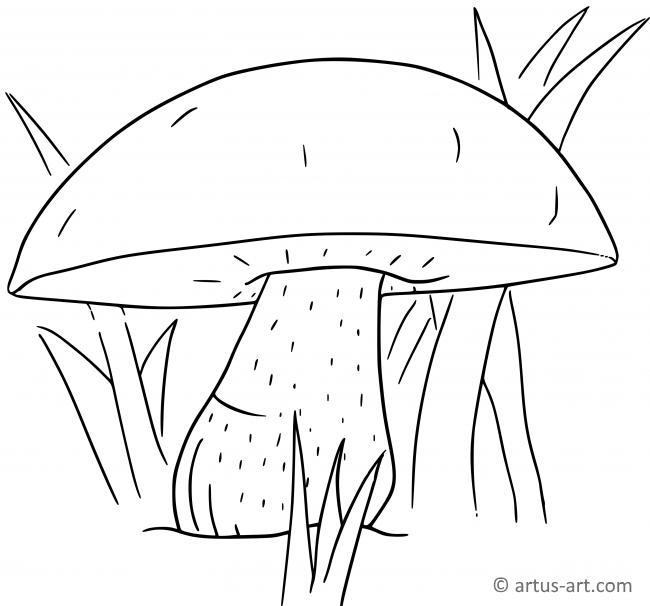 Mushroom Coloring Page