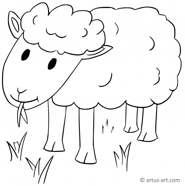 Schaf Ausmalbild Gratis Ausdrucken Ausmalen Artus Art