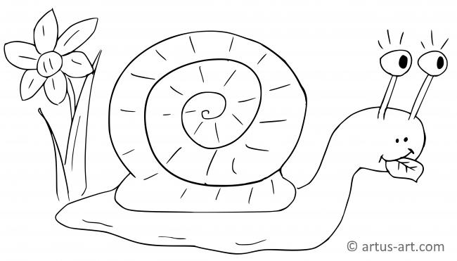 Snail Coloring Page