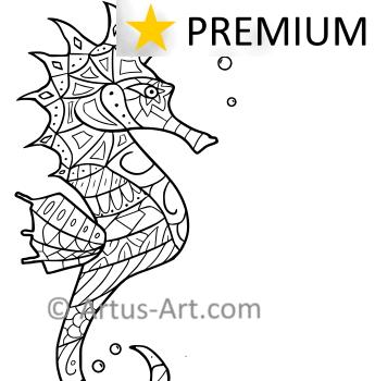 Premium Seepferdchen