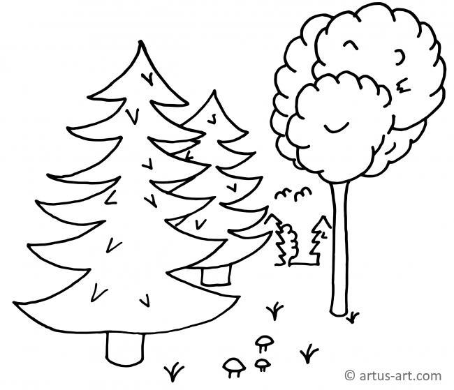 Wald Ausmalbild » Gratis Ausdrucken & Ausmalen » Artus Art