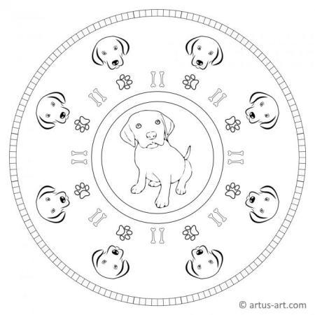 Labrador Mandala