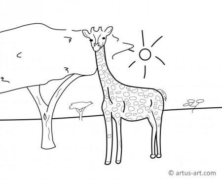 Giraffen Ausmalbild