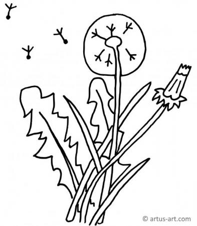 Blowball Coloring Page