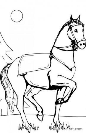 Pferd im Wald Ausmalbild
