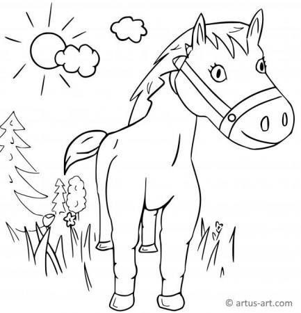 Pferd Ausmalbild (in der Natur)