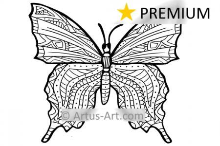 Premium Schmetterling