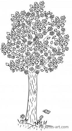 Blühender Baum im Frühling Ausmalbild