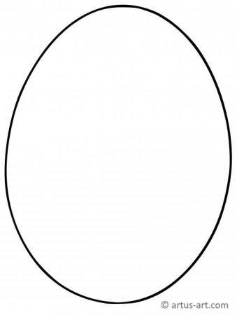 Egg Outline